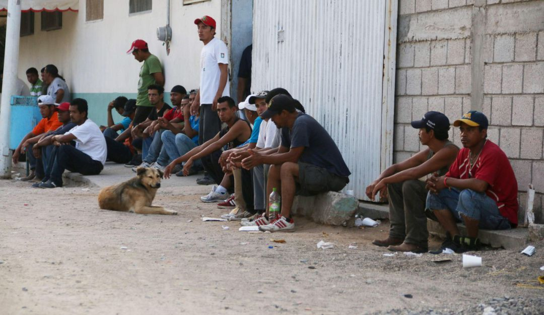 CNDH y CEDHJ solicitan seguridad para albergue de migrantes asaltado