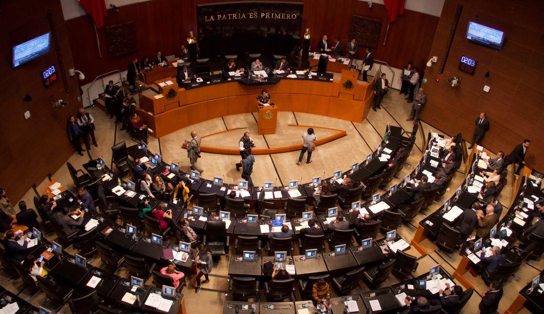 Senado arranca procesos para elegir a titular de la CNDH