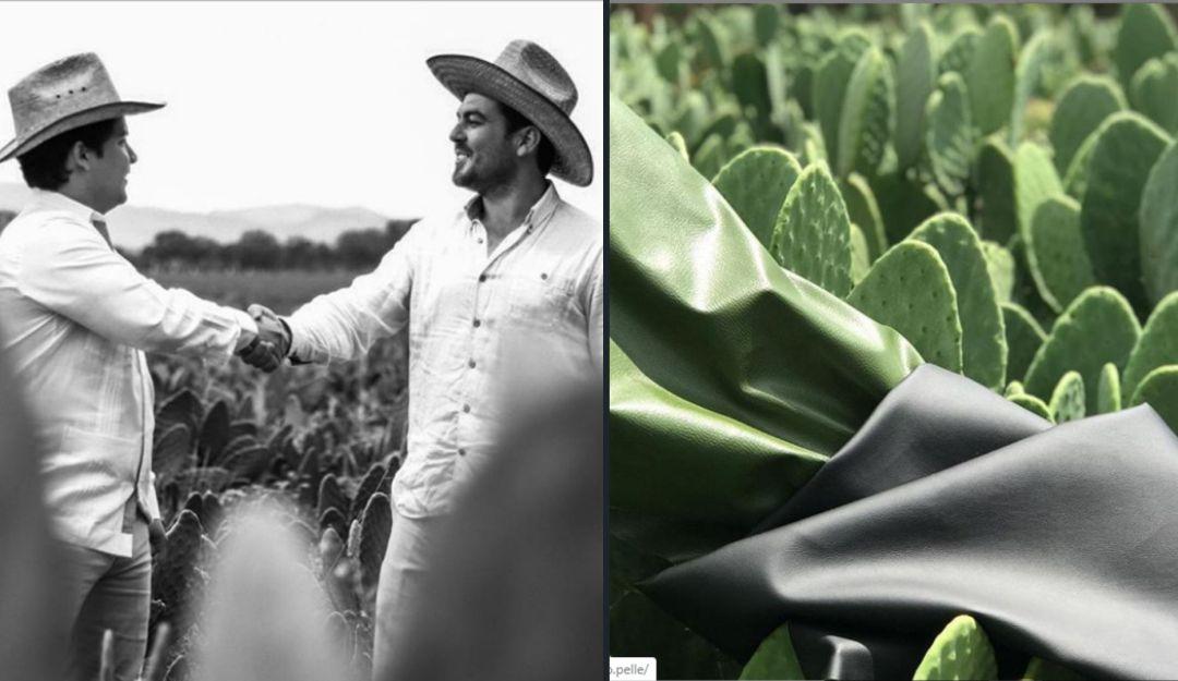 Conoce Desserto, la piel sintética hecha de nopal creada por mexicanos