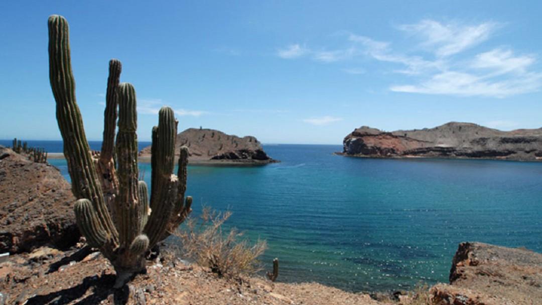 Baja California crece a demanda del turismo: Mario Escobedo