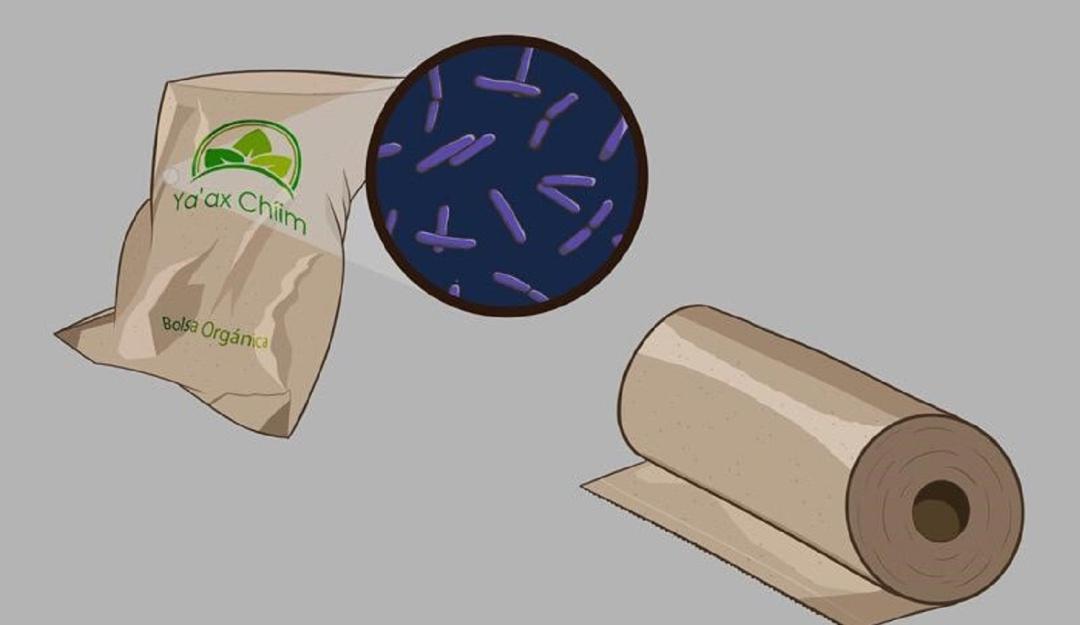 Crean estudiantes del Tec bolsa que acelera el proceso de desintegración