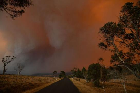 Algunas de las causs de estos incendios, es por el calor extremo, sequía prolongada y fuertes vientos