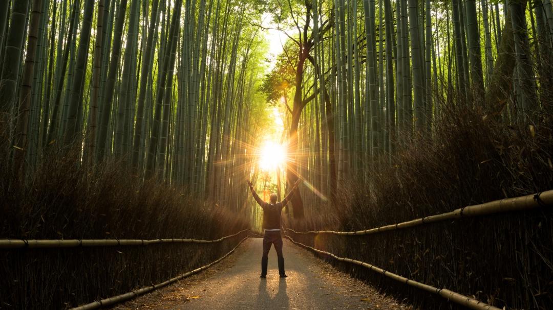 El arte de la renovación, según el budismo