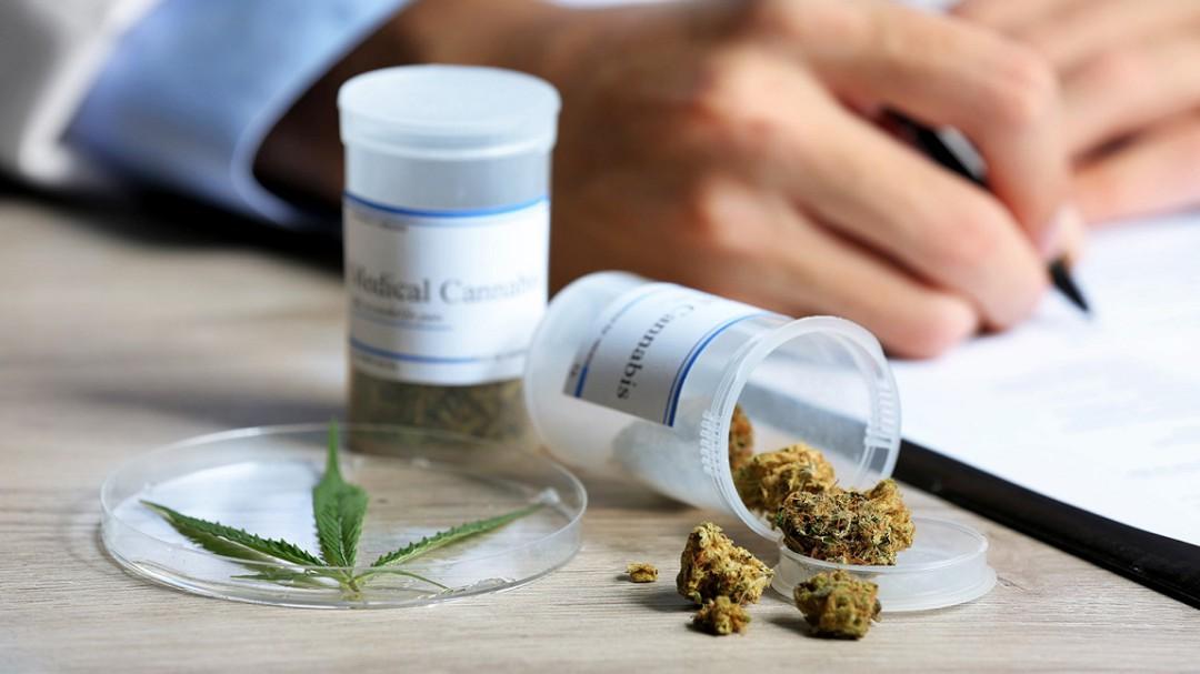 Es tiempo de legislar sobre cannabis: Zara Snapp