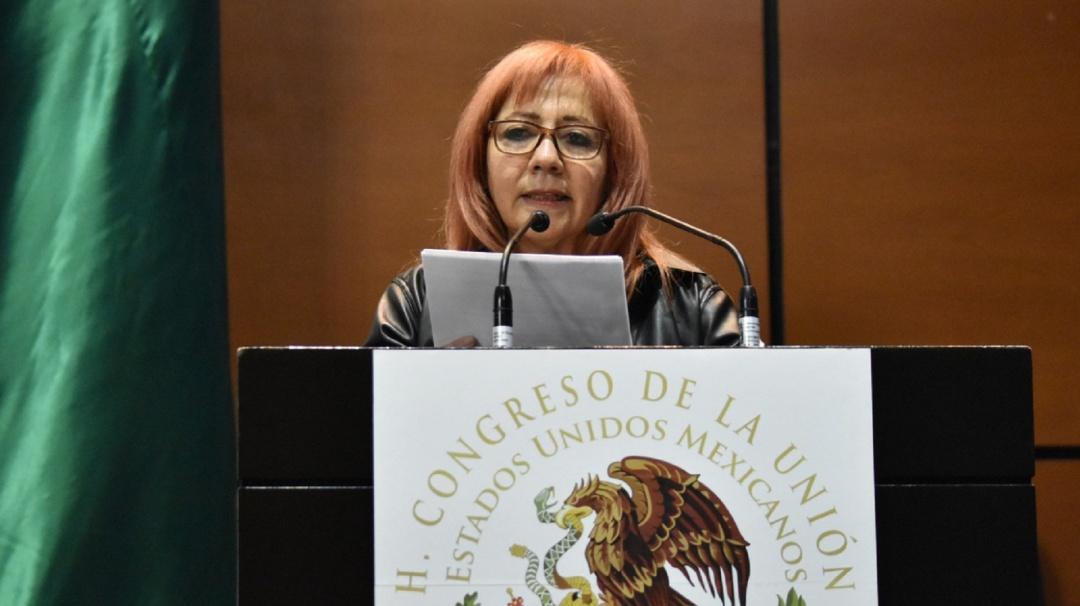 Titular de CNDH rinde informe de labores ante el Congreso