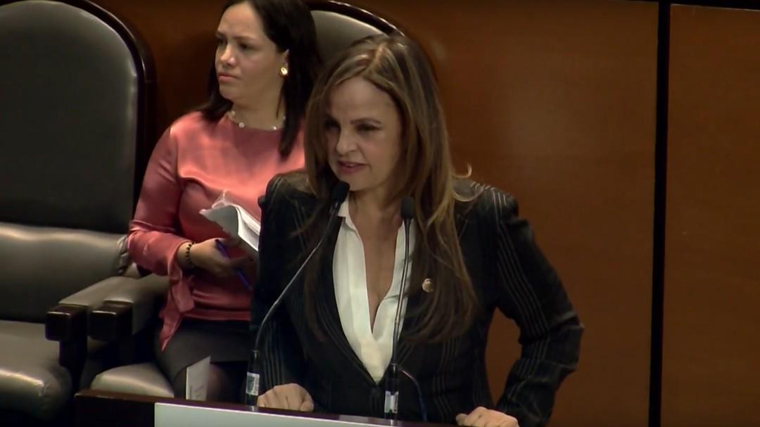Absoluta falta de entendimiento de Gertz: Lorena Villavicencio