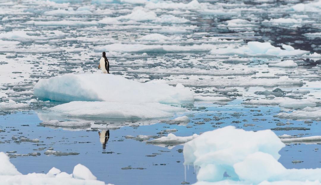 La Antártida registra temperaturas jamás alcanzadas
