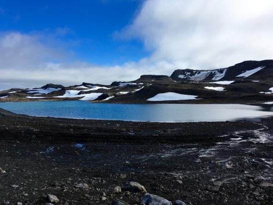 En los últims 50 años la temperatura de la Antártida aumento 3º C
