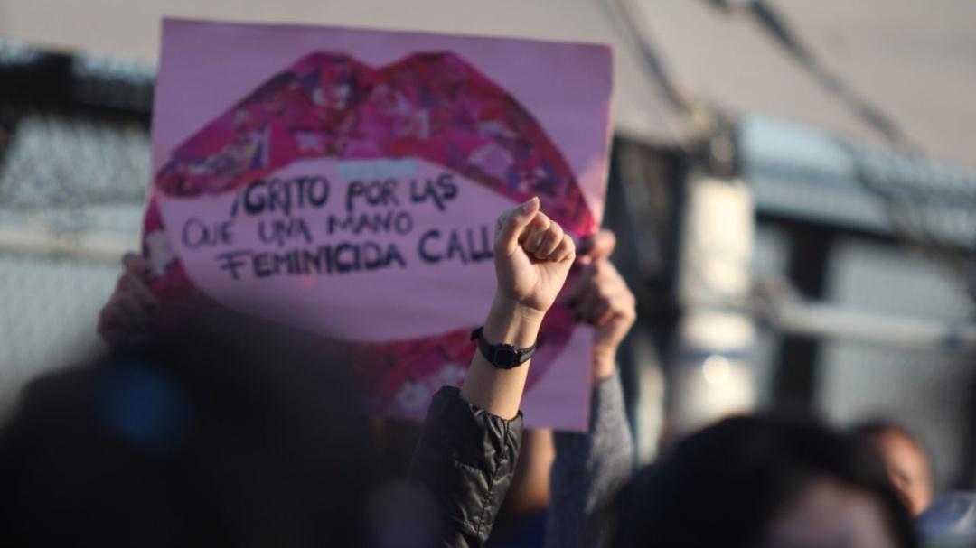 Negar feminicidios es negar que existen las mujeres: Frida Guerrera