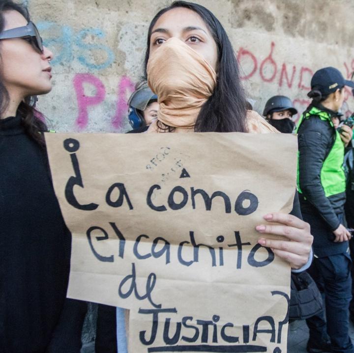 El feminicidio es un tema que no da votos: Luz Estrada, coordinadora OCNF