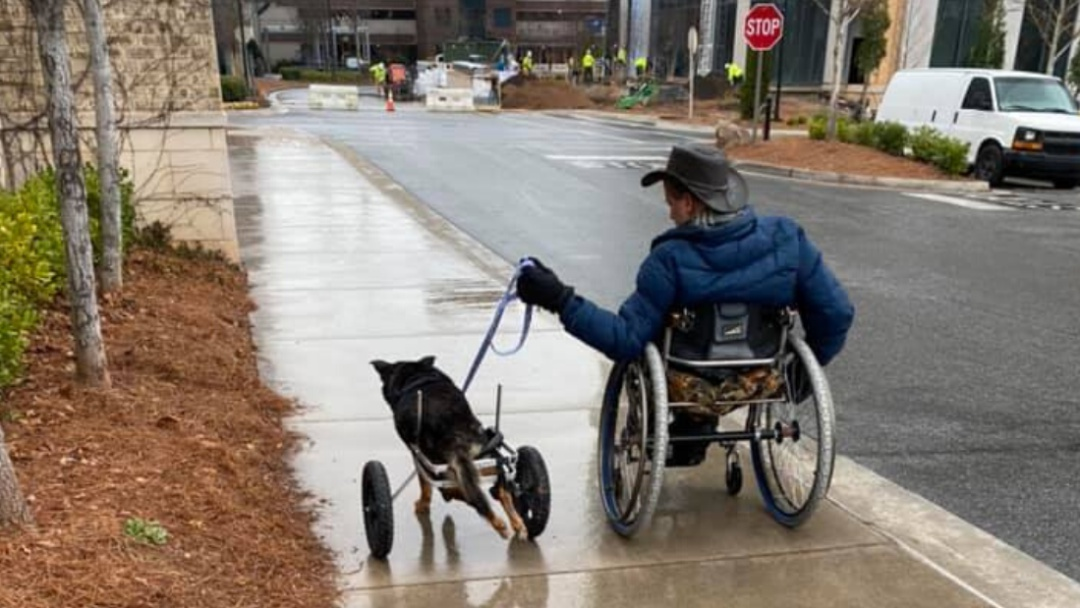 Hombre con discapacidad adopta a perrito con una condición similar