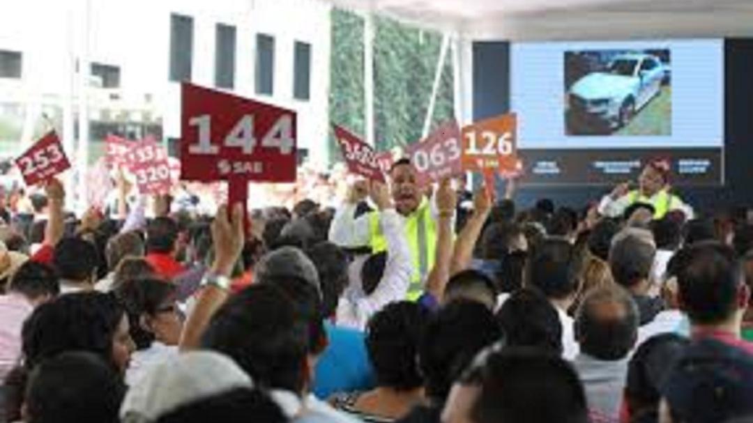 Inicia primer subasta del 2020 en los Pinos y la octava de este gobierno
