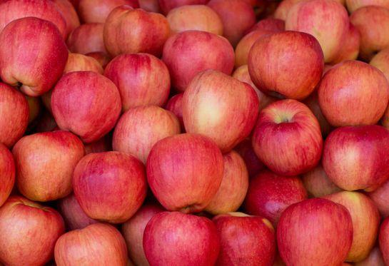 Manzanas es una sugerencia