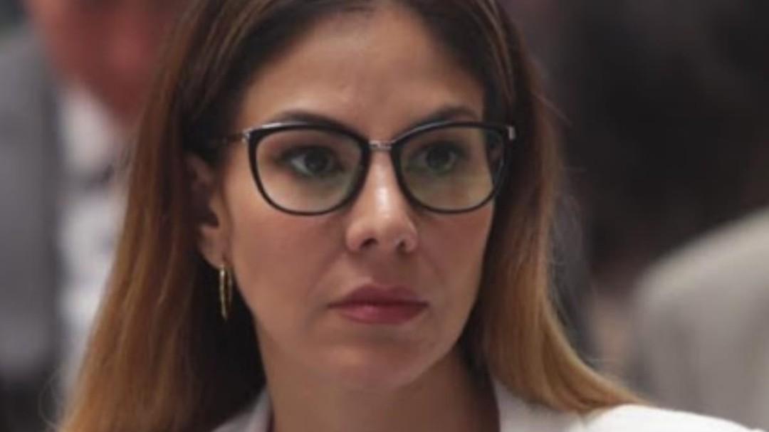 Diputada perredista lamenta falta de acción federal ante pandemia