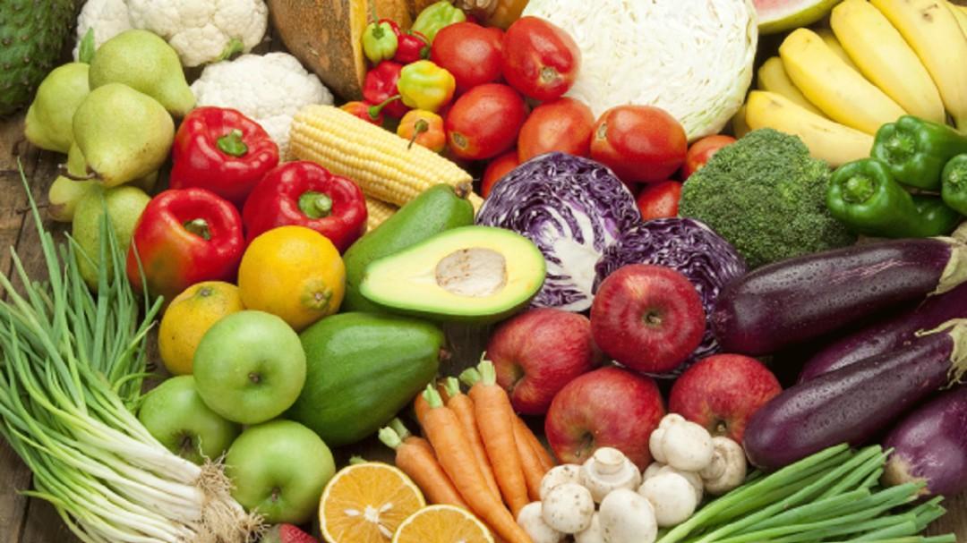 Ningún país tuvo problema de abasto alimentario: Miriam Bertrán