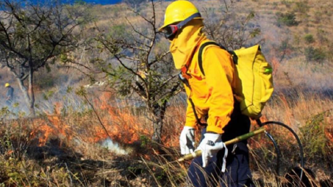 Hay 26 incendios activos en el país: Conafor