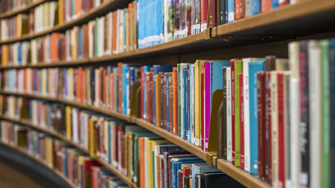 Día Mundial del Libro; esto es lo que nos recomiendan autores para leer