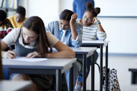 Dentro del campo de la inteligencia emocional se ha estudiado el papel que juegan las emociones en el contexto educativo
