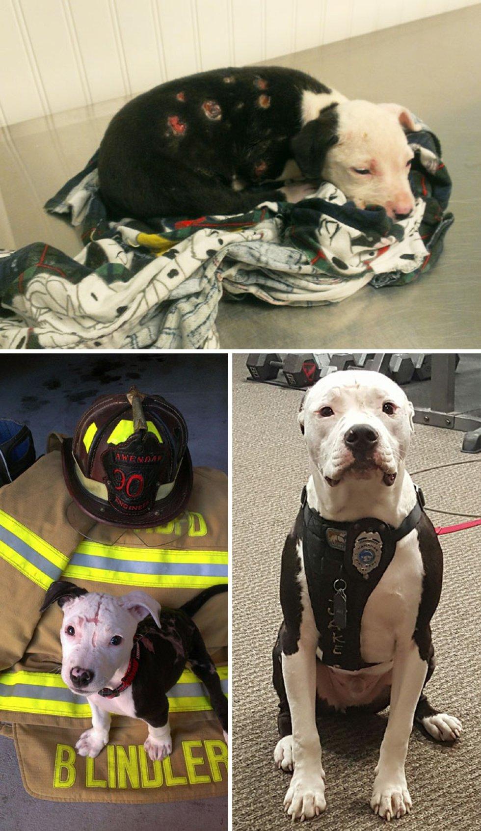 Un incendio le dejó quemaduras a 75% de su cuerpo. Un bombero lo adoptó y lo hizo uno más del equipo