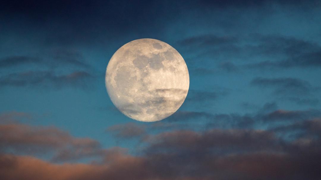 """Ya casi llega la """"Luna Lobo""""; qué significa, cuándo y cómo verla en enero"""