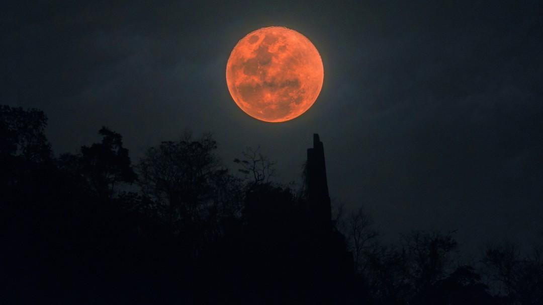 Luna de Sangre; Así podrás ver el primer eclipse lunar total sin telescopio