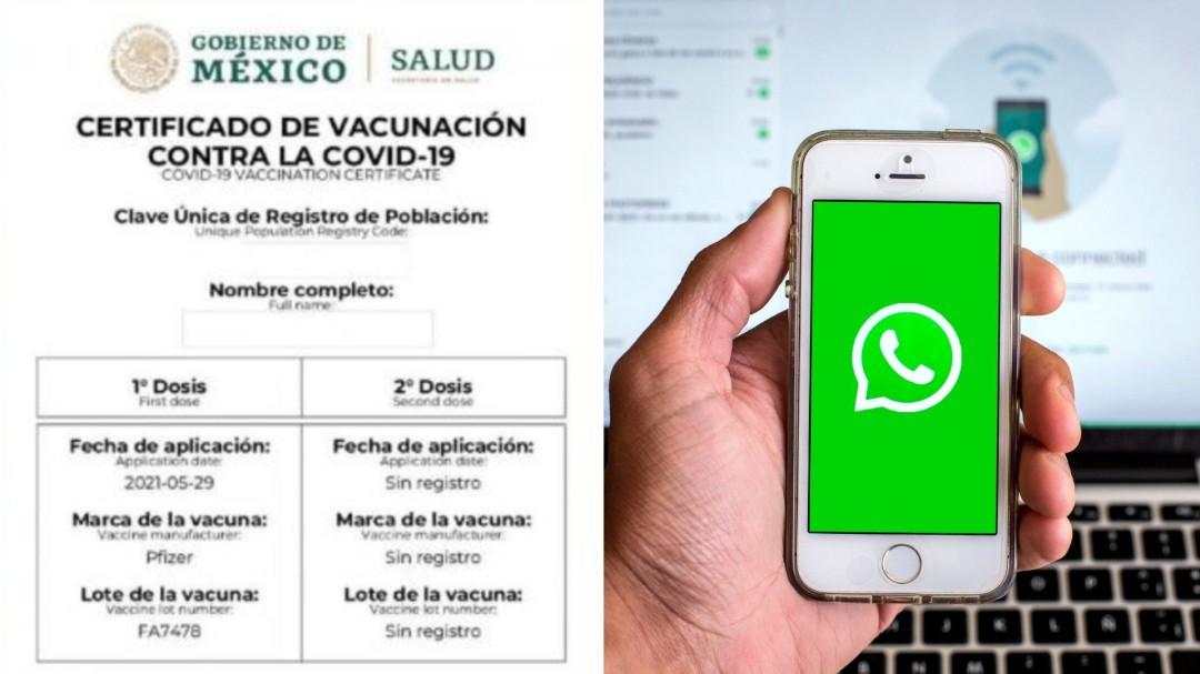 Ya puedes obtener tu certificado COVID vía WhatsApp; te decimos los pasos
